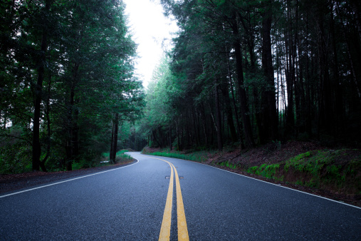 California State Route 1「Freshly Paved Highway 1 through Mendocino County」:スマホ壁紙(6)
