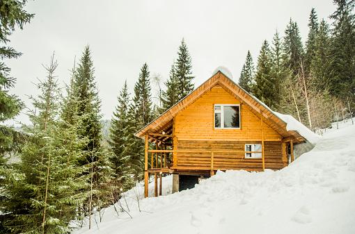 Log Cabin「Cabin on snowy remote hillside」:スマホ壁紙(18)