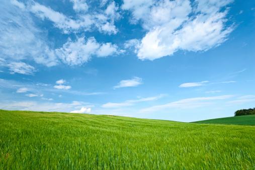 Hill「Spring landscape」:スマホ壁紙(15)