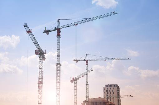 Crane - Construction Machinery「Germany, Duesseldorf, large construction site, cranes」:スマホ壁紙(14)