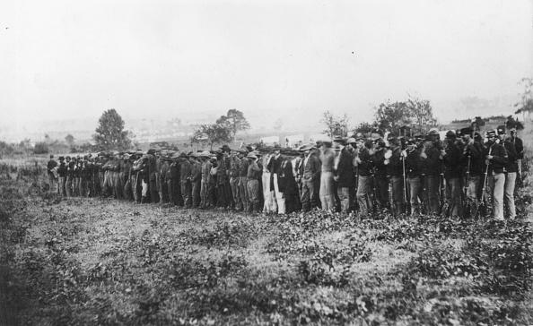 Guarding「Guarding Confederates」:写真・画像(1)[壁紙.com]