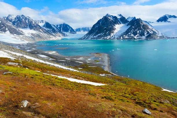 Magdalenafjord:スマホ壁紙(壁紙.com)
