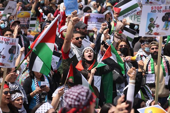 パレスチナ「Palestinian Organizations In Chicago Protest Israeli Attacks On Gaza」:写真・画像(12)[壁紙.com]