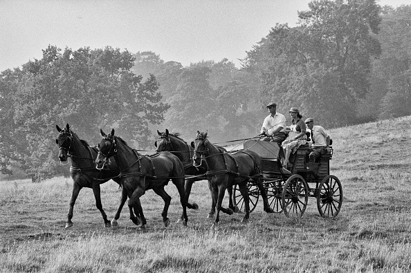 Horse「Prince Philip In Equestrian Event」:写真・画像(11)[壁紙.com]