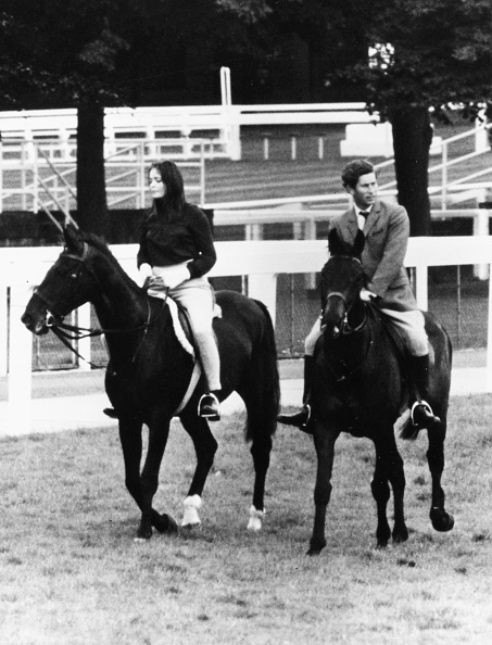 Horse「Prince Charles And Louise Astor」:写真・画像(15)[壁紙.com]