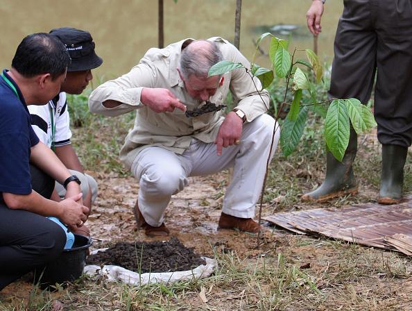 Environmental Conservation「Prince Charles Visits the Harapan Rainforest」:写真・画像(10)[壁紙.com]