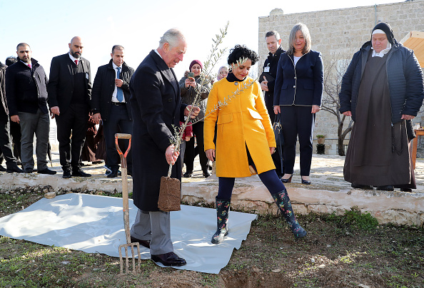 Tree「The Prince of Wales Visits Israel And The Occupied Palestinian Territories」:写真・画像(11)[壁紙.com]