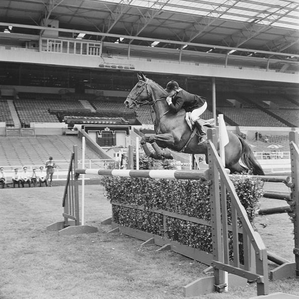 Horse「Ann Moore」:写真・画像(16)[壁紙.com]