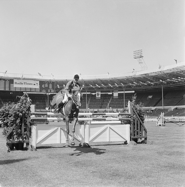 Horse「Peter Robeson」:写真・画像(18)[壁紙.com]