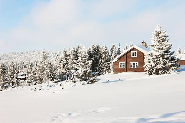 Log cabin in the woods:スマホ壁紙(壁紙.com)