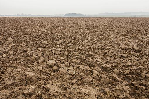 Planting「Mounded dirt in Waterloo Battlefield, Wallonia, Belgium」:スマホ壁紙(17)