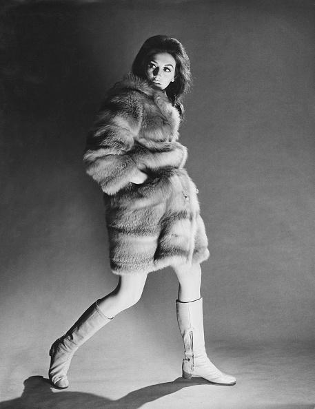 Fur Coat「Furtive In Furs」:写真・画像(12)[壁紙.com]