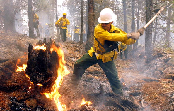 Heat - Temperature「Wildfire In Oregon」:写真・画像(16)[壁紙.com]