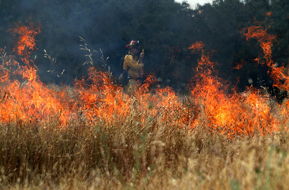 Justin Sullivan「Cal Fire Conducts Controlled Burn In Sonoma Valley」:写真・画像(12)[壁紙.com]