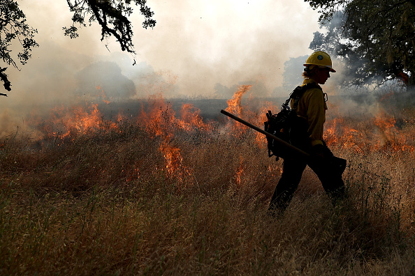 Justin Sullivan「Cal Fire Conducts Controlled Burn In Sonoma Valley」:写真・画像(10)[壁紙.com]