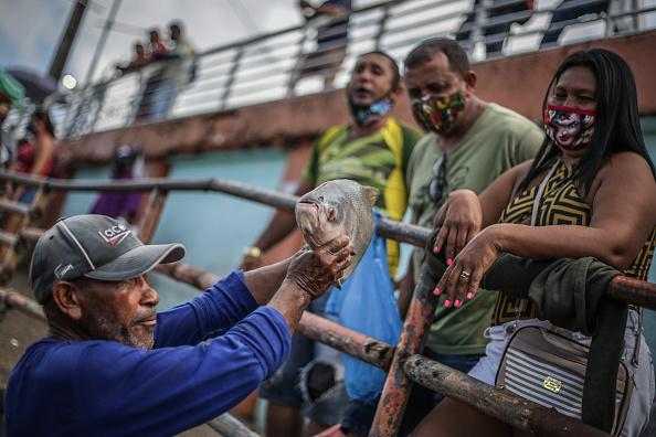 Fisherman「Coronavirus Pandemic Overwhelms Brazilian City Of Manaus」:写真・画像(10)[壁紙.com]