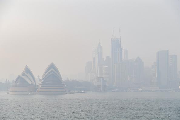Sydney「Smoke Haze Over Sydney As Fire Danger Risk Heightens」:写真・画像(16)[壁紙.com]