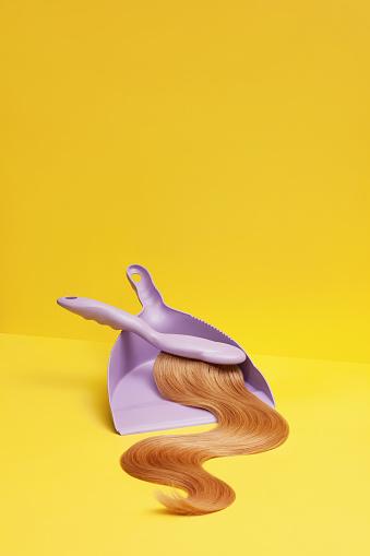 Hair「Hairy Brush and Dust Pan」:スマホ壁紙(11)