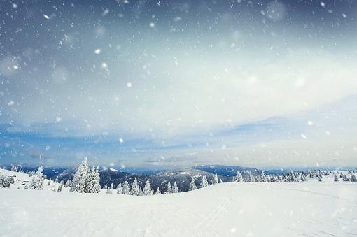 雪「雪の嵐」:スマホ壁紙(0)