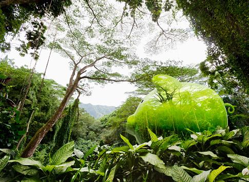 Tropical Tree「Piggy Bank Rain Forest Hidden Savings」:スマホ壁紙(7)