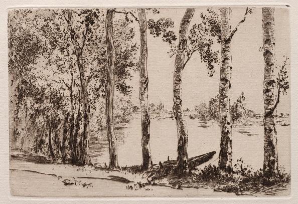 Aspen Tree「Aspens On The Bank Of The Seine. Creator: Félix Bracquemond (French」:写真・画像(0)[壁紙.com]