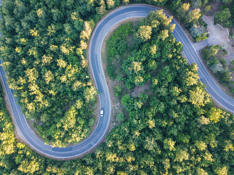 Hairpin Curve「Road trip through a forest - Aerial point of view」:スマホ壁紙(2)