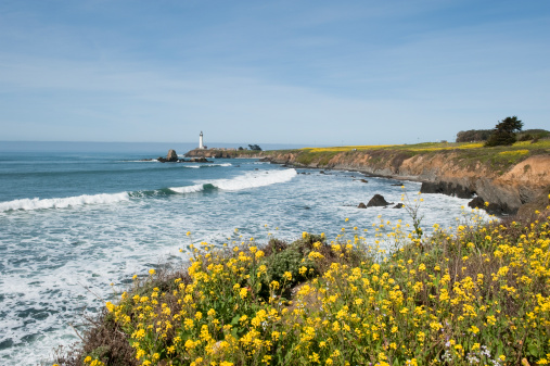 California State Route 1「Pigeon Point Lighthouse along Highway 1.」:スマホ壁紙(13)