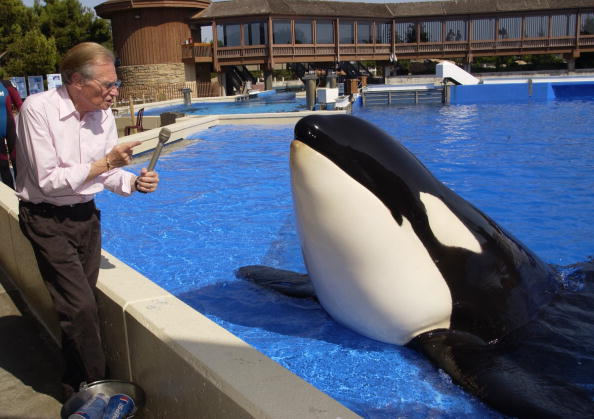 Interview - Event「Talk Show Host Larry King Pretends To Interview Shamu A Killer Whale During A Family Vi」:写真・画像(4)[壁紙.com]