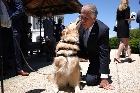 Domestic Animals「House Members Discuss New Veterans Therapy Act Using Service Dogs」:写真・画像(16)[壁紙.com]