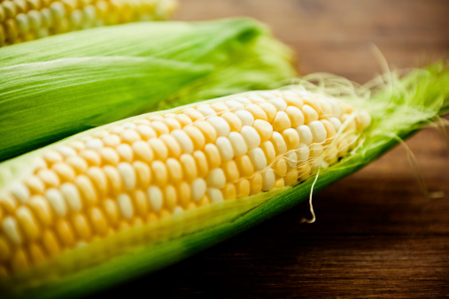 Corn「Corn on the cob」:スマホ壁紙(13)