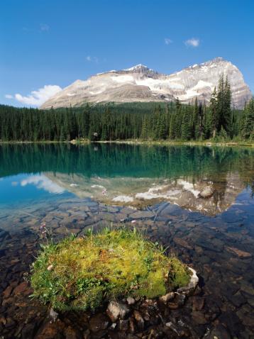 Yoho National Park「Mountain reflected in Lake O'Hara, Rocky Mountains.」:スマホ壁紙(15)