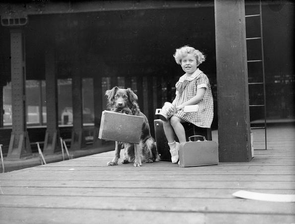 Archival「Girl's Best Friend」:写真・画像(10)[壁紙.com]
