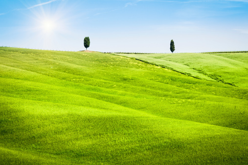 Val d'Orcia「Green Hills Landscape in Tuscany, Val d'Orcia, Italy」:スマホ壁紙(11)