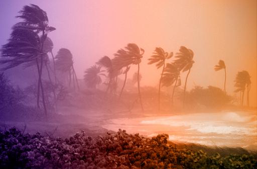 Hurricane - Storm「Hurricane Winds」:スマホ壁紙(13)