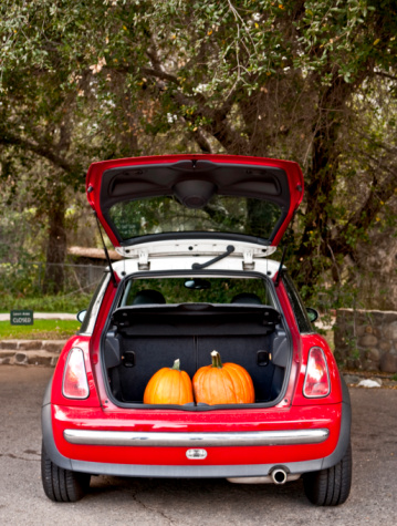 Boot「Two pumpkins in the trunk of a car」:スマホ壁紙(14)