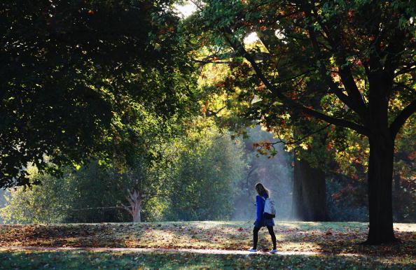 歩く「Autumn Colours Throughout The UK」:写真・画像(0)[壁紙.com]
