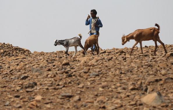 Boys「Everyday Life In Ethiopia」:写真・画像(2)[壁紙.com]