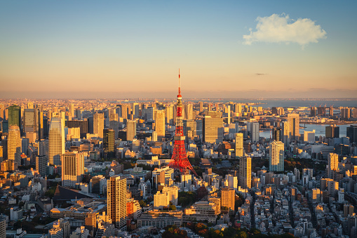 Tokyo Tower「View to Tokyo Tower in Warm Sunset Light Tokyo Japan」:スマホ壁紙(12)