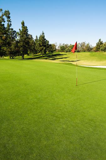 Hole「Flag in hole on golf course」:スマホ壁紙(18)