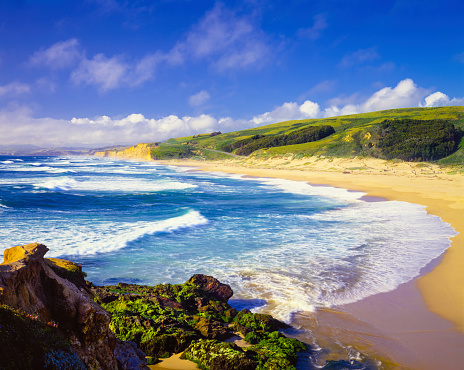 California State Route 1「Coastline Pescadero State Beach,Carmel,Pacific Ocean,CA(P)」:スマホ壁紙(1)