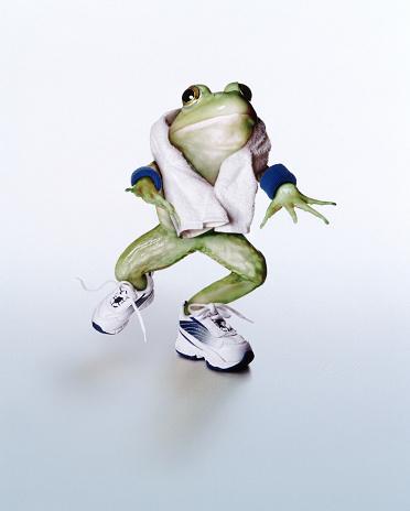 Making A Face「Jogging frog」:スマホ壁紙(14)