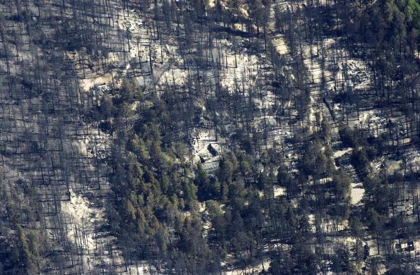 Aspen Tree「Aspen Fire Continues To Burn In Arizona」:写真・画像(14)[壁紙.com]
