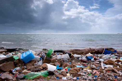 Dirty「trash on the beach」:スマホ壁紙(2)