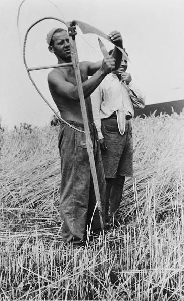 Sharpening「Jewish Slave Labour」:写真・画像(17)[壁紙.com]