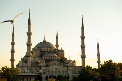 Turkey - Bird「Blue Mosque, Sunset, Istanbul, Turkey」:スマホ壁紙(16)