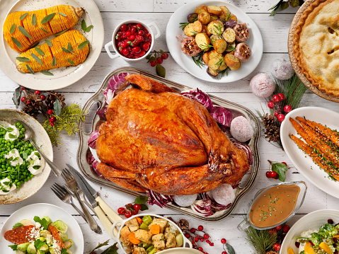 Broccoli「Holiday Turkey Dinner」:スマホ壁紙(15)