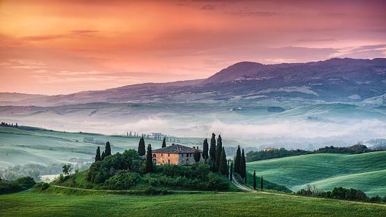 Italian Cypress「Sunrise in Tuscany」:スマホ壁紙(12)
