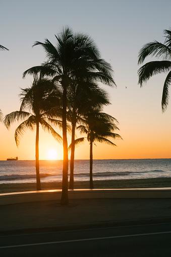 Sunrise - Fort Lauderdale「Sunrise in Fort Lauderdale, Florida」:スマホ壁紙(3)