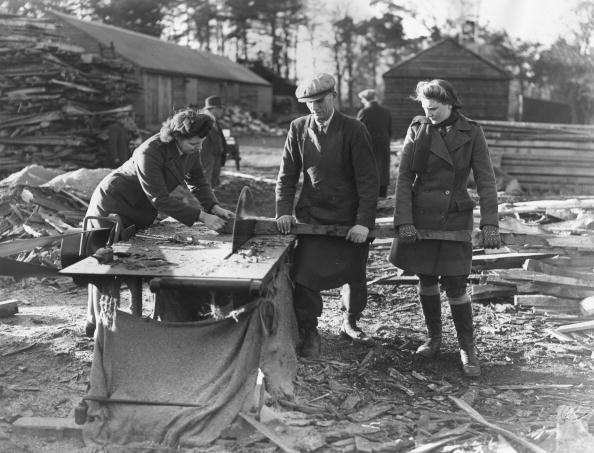 Cutting「Sawing Wood」:写真・画像(19)[壁紙.com]