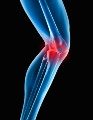 Bone「Human knee, digital composite」:スマホ壁紙(4)